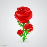 rose wektora Zdjęcia Royalty Free