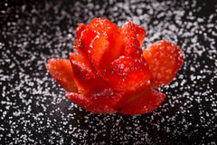 The rose which is cut out from ripe strawberry on a black plate, Royalty Free Stock Image