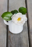 Rose in white jug on wooden table Stock Photo