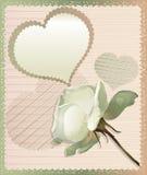 Rose White och hjärta Arkivfoto