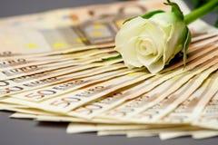 Rose White och pengar Royaltyfri Fotografi