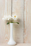 Rose White Vase White Wall blanche Photographie stock