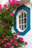 Rose Window Royalty Free Stock Photo