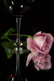Rose and wine Stock Photography