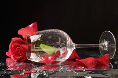 Rose and wine glass Stock Photos