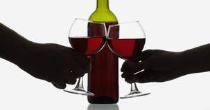Rose Wine Vino tinto en dos copas de vino sobre el fondo blanco imagen de archivo