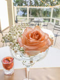 Rose in wineglass Royalty Free Stock Image