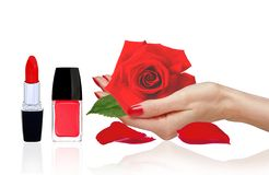 Rose in woman hand, red nail polish and lipstick isolated Stock Photos