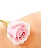 Rose on woman's waist. Pink rose on a woman's waist, isolated on wihte background Royalty Free Stock Photos