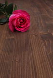 Rose on wood background Royalty Free Stock Photos