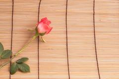 Rose on wood background. Stock Photos