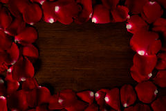 Rose. On wood floor background. Give  to darling in valentine's day. or send love to marry royalty free stock image