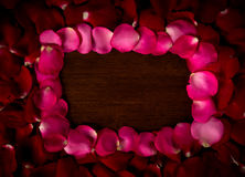 Rose. On wood floor background. Give  to darling in valentine's day. or send love to marry royalty free stock photo