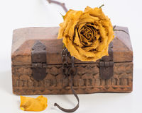 Rose and wooden box Royalty Free Stock Photo