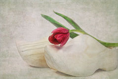 Rose on Wooden Shoes Royalty Free Stock Photography