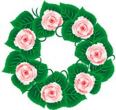Rose wreath Stock Image
