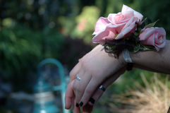 Rose Wrist Corsage. A young woman wears a beautiful wrist corsage of light pink roses Stock Photography