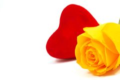 Rose y amor Fotografía de archivo libre de regalías