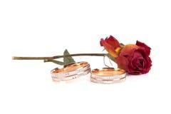Rose y anillos de bodas en el fondo blanco Fotos de archivo libres de regalías
