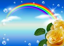 Rose y arco iris Imagen de archivo libre de regalías