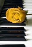 Rose y claves Fotografía de archivo libre de regalías