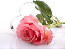 Rose y corazón Imagen de archivo libre de regalías