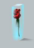 Rose y cristal Fotografía de archivo
