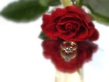 Rose y diamante Imágenes de archivo libres de regalías