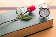 Rose y diario viejo Fotos de archivo