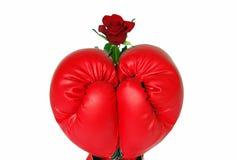 Rose y guantes Fotografía de archivo libre de regalías