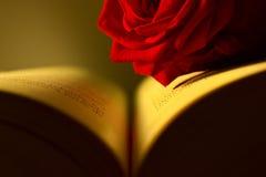 Rose y libro Fotografía de archivo