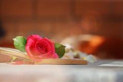Rose y libro rosados en la tabla en la luz del sol, foco suave valentines imagen de archivo
