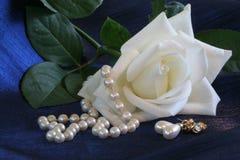 Rose y perlas blancas imagen de archivo