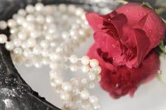 Rose y perlas en el espejo negro foto de archivo