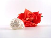 Rose y shell Fotos de archivo libres de regalías