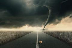 Rose y tornado Foto de archivo