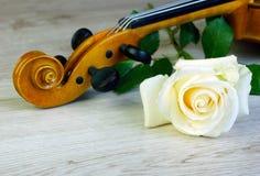 Rose y violín primer imágenes de archivo libres de regalías