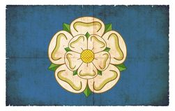 Rose of Yorkshire (Great Britain). Rose of Yorkshire created in grunge style Stock Photo