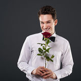 Rose for you Stock Images