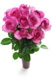 Rose yves piaget Stock Image
