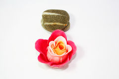 Rose Zen Spa Stock Images