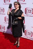 Roseanne Barr Zdjęcie Royalty Free
