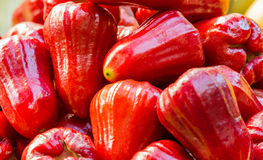 Roseapple in market for health and food. Royalty Free Stock Images