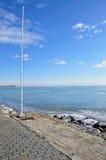 Roseau de l'hiver. Image stock