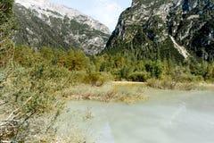 Roseau de marécage de dolomites de lac Toblach Photo stock