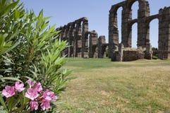 Rosebay and Roman Aqueduct of Merida. Roman Aqueduct of Merida Los Milagros. Extremadura, Spain. West side Royalty Free Stock Photos