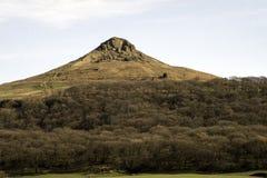 Roseberry toppning, heder för norr yorkshire Royaltyfri Foto