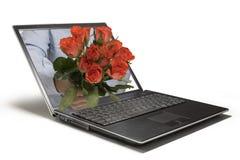 Rosebook Foto de Stock Royalty Free