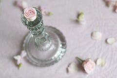 Rosebud с подсвечником Стоковое Фото