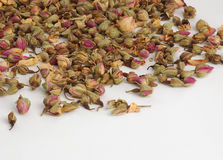 Rosebuds. Spilled Pink Rose buds Royalty Free Stock Photo